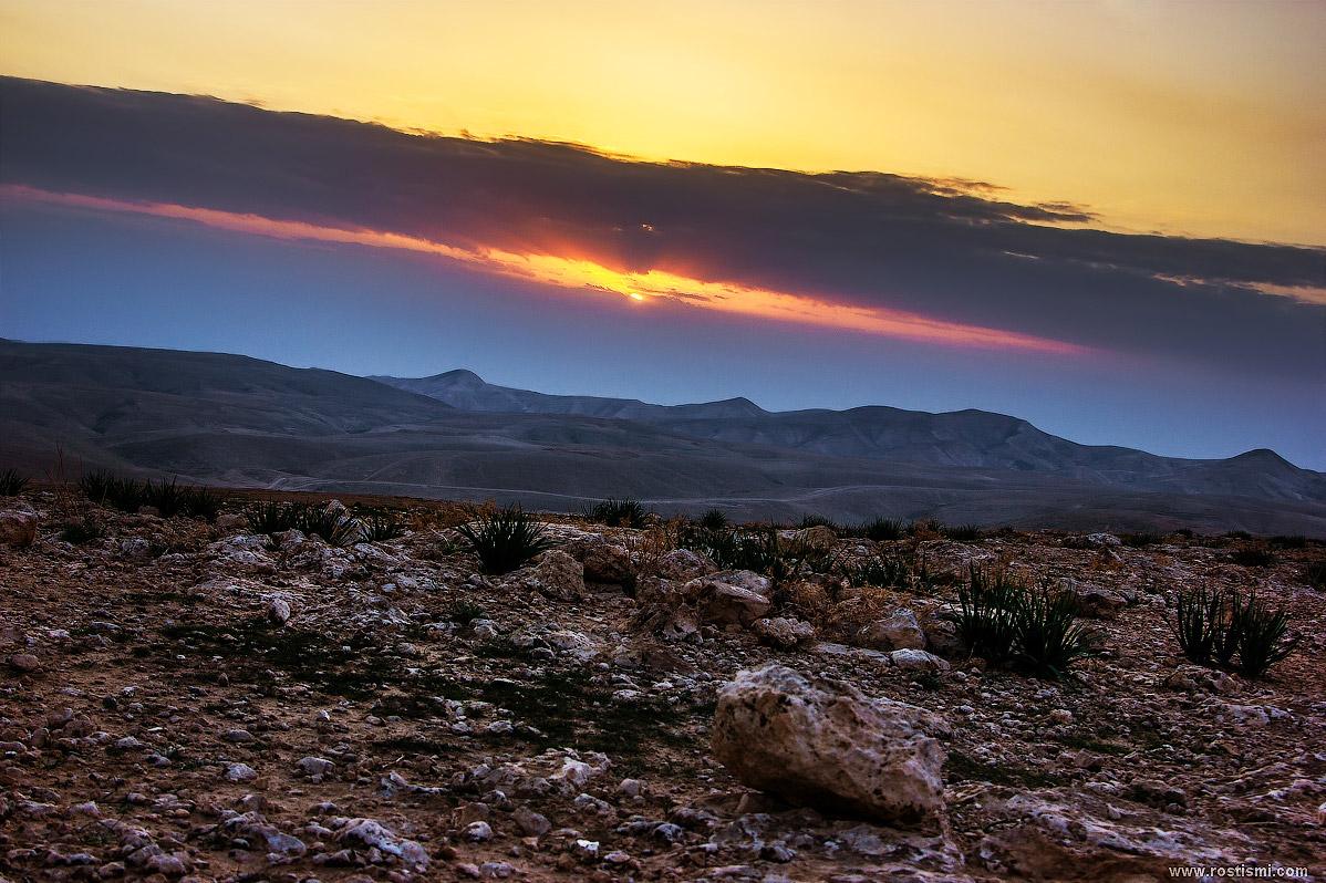 современных домов природа израиля фотографии данное
